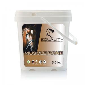 MuscleBone